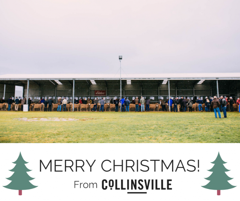 MERRY CHRISTMAS FROM COLLINSVILLE