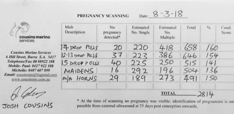 Collinsville Pregnancy Scanning Results