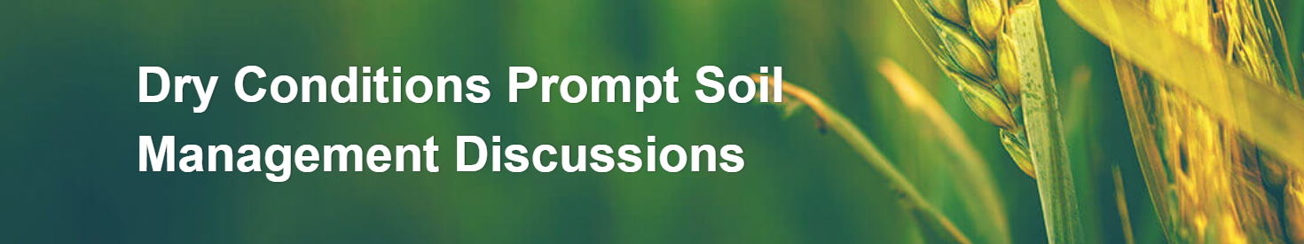 HOT TOPIC: SOIL MANAGEMENT IN DRY CONDITIONS