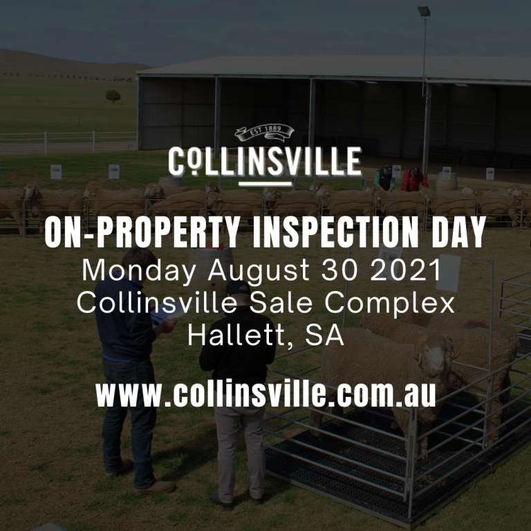 COLLINSVILLE ON PROPERTY INSPECTION DAY